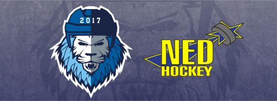 19. 1. 2019 MOSTEČTÍ LVI – NED Hockey Nymburk