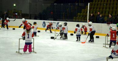 Pojď hrát hokej