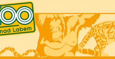 Lvíčata v ZOO