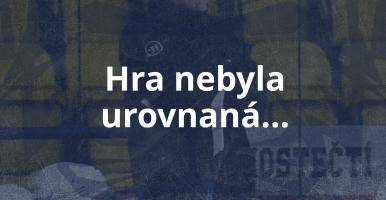 MOSTEČTÍ LVI — HC Děčín
